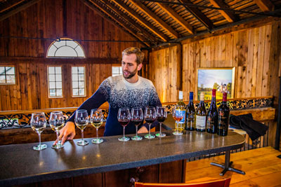 New-World-Wine-Tours-1