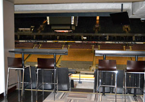 Take in the action from an Air Canada Centre suite