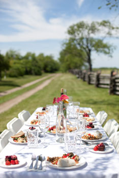 Vineyard dining at The Grange of Prince Edward Vineyards & Estate